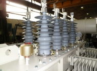 Silicon bushings on a distribution transformer