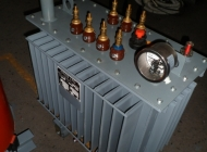 OTDS distribution transformer
